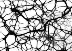 Hvad er demensmedicin og hvordan virker det?