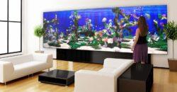 Interaktiv akvarievæg