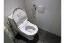 Toilet med vaske og tørre funktion