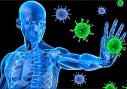 Immunsystem og demens